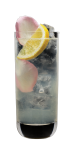 Lychee_Collins_(on_black_backround)_72dpi_444x1024px_J
